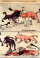 Букурешки мировен договор - карикатура.png