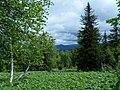 Вид с Чувала на Караульную сопку - panoramio.jpg