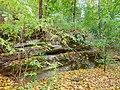 Вінничина, Муровані Курилівці парк Жван 27.jpg