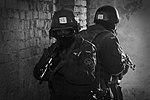 Гвардійці продемонстрували НАТівську бойову виучку 16 (25229399135).jpg