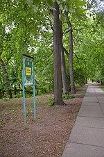 Дендропарк імені Богомольця. Київ. Фото 4.jpg