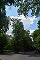 Дуби Рильського DSC 0445.jpg