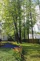 Елагин парк, фестиваль тюльпанов4566.jpg