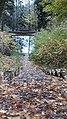 Каменная лестница.Вики-встреча 24.10.2020 01.jpg