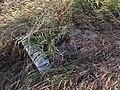 Курган біля кладовища с.Новоселівка, більший хрест в траві.JPG