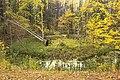 Лесной провал.jpg