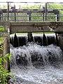 Никольский канал, Луговой парк 2.jpg
