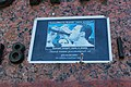 Пам'ятник Іванову А. В. IMG 5018.jpg