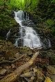 Първият по голям водопад по пътеката за Боянски водопад.jpg