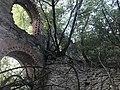 Руины межировской синагоги4.jpg