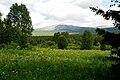 Р. Щугор, разнотравные луга в долине.jpg