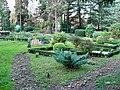 Ужгородський ботанічний сад. Ужгород. Ботанічний сад (8).JPG