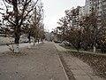 Улица Академика Богомольца - panoramio.jpg