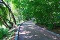 Умань, Звивиста алея до мосту.jpg