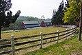 乳牛專業飼養區 Barns - panoramio (1).jpg