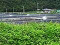 南澳海岸路 Nanao Haian Road - panoramio (1).jpg