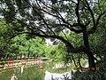 广州越秀公园 - panoramio (1).jpg