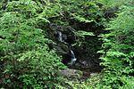 白岩の滝 - panoramio (11).jpg