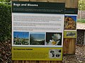 -2019-11-05 Information display, Deep History Coast point, Trimingham (3).JPG