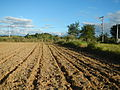 067jfLandscapes Sunsets Roads Maronquillo San Rafael Bulacanfvf 28.JPG
