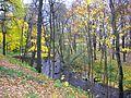 110. Lomonosov. Karasta River.jpg