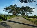 1567Franciso Viola Highway San Rafael Bulacan 07.jpg