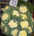 19 - cauliflower.jpg