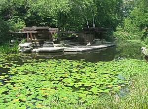 Alfred Caldwell - Alfred Caldwell Lily Pool is a National Historic Landmark listing rehabilitated and maintained by the Chicago Park District and Lincoln Park Conservancy.