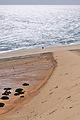 2012-01-16 13-49-29 Spain Canarias Jandía.jpg