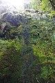 2012-10-26 15-30-18 Pentax JH (49283368506).jpg