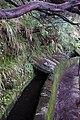 2012-10-27 13-36-09 Pentax JH (49284051162).jpg