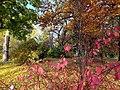 20121029015DR Dresden-Südvorstadt Beutlerpark Herbst.jpg