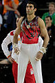 2015 European Artistic Gymnastics Championships - Rings - Davtyan Vahagn 01.jpg