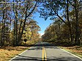 2016-10-24 12 11 42 View north along Shenandoah National Park's Skyline Drive just north of the Doyles River Overlook on the border of Albemarle County, Virginia and Rockingham County, Virginia.jpg