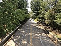 2019-09-12 10 58 24 View south along the George Washington Memorial Parkway from the overpass for Alexandria Avenue in Fort Hunt, Fairfax County, Virginia.jpg