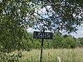 2 - Ландшафт в окрестностях д. Ивня. Батецкий район, Новгородская область.jpg