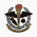 34 Sqn SAAF badge.png