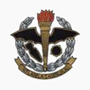 34 Squadron SAAF - Image: 34 Sqn SAAF badge