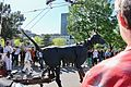 375th Anniversary Of Montreal 65.jpg