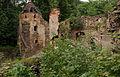 378viki Ruiny zamku Świecie. Foto Barbara Maliszewska.jpg