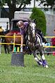 4ème manche du championnat suisse de Pony games 2013 - 25082013 - Laconnex 32.jpg