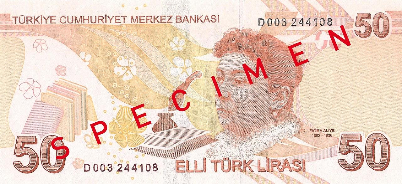 1280px-50_T%C3%BCrk_Liras%C4%B1_reverse.jpg