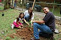 52Rafael Gonzalez, USFWS biologist and volunteer, Maria Mercedes Acosta helping girl plant an endangered Matabuey tree at the Puerto Rico Zoo. (5755706579).jpg