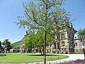 54470 Lieser, Germany - panoramio (12).jpg