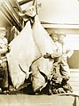 600 pounds of Halibut, Petersburg, Alaska 1930s (109425219).jpg