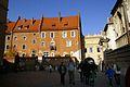 7424vik Wawel. Foto Barbara Maliszewska.jpg