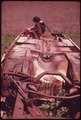 ABANDONED TRACTOR NEAR JAMAICA BAY - NARA - 547883.tif