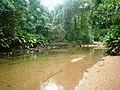 APA Guaraqueçaba - Canale nella riserva del Sebui.JPG