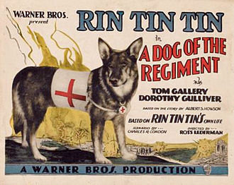 A Dog of the Regiment - Theatrical release poster