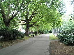 A cool summer Saturday in Lincoln's Inn Fields - geograph.org.uk - 884264.jpg